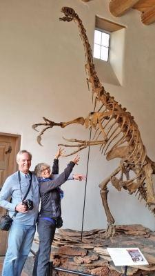 Flagstaff Arizona Attractions - Therizinosaur at Museum of Northern Arizona