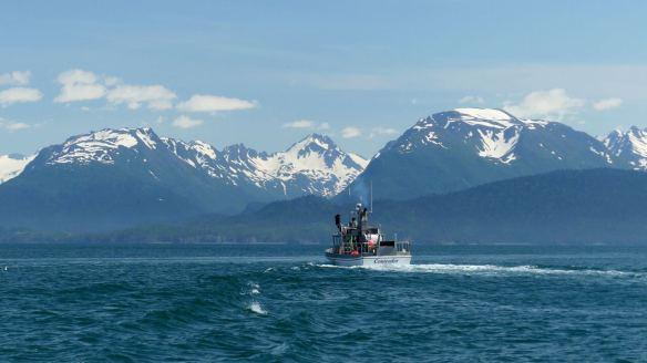 kachemak-bay-has-the-best-alaska-fishing-trips