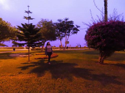 Park in San Isidro district - Lima