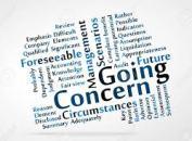 going concern principle