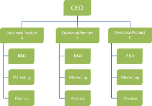 Divisional business plan