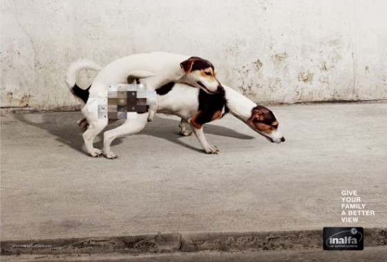 Inalfa Sunroofs - Doggy Style