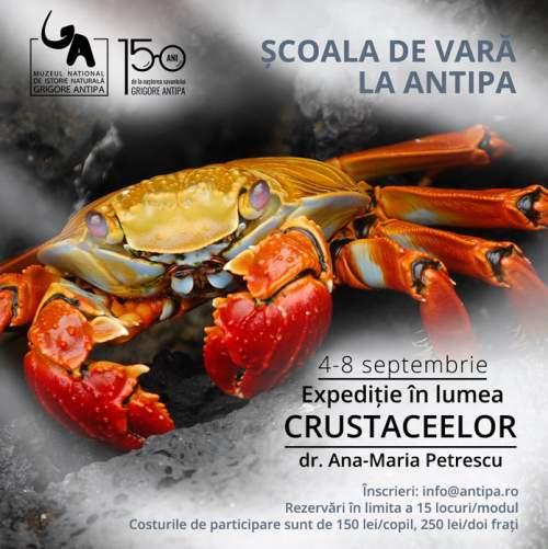 Școala de Vară de la Antipa: Expediție în lumea crustaceelor