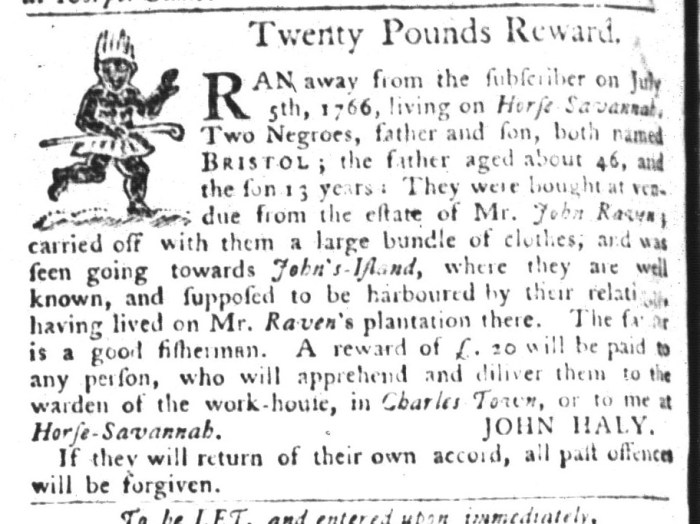 Jun 30 - South-Carolina Gazette and Country Journal Slavery 9