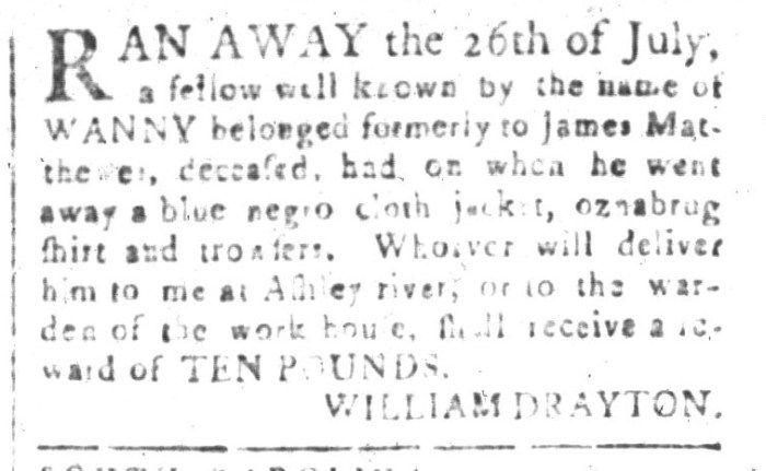 Aug 7 - South-Carolina and American General Gazette Slavery 11