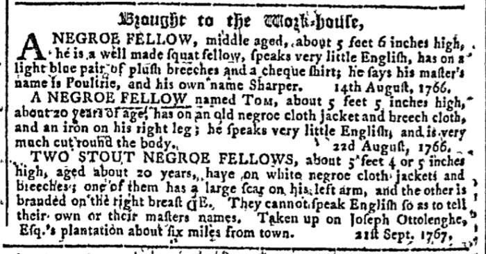 Sep 30 - Georgia Gazette Slavery 9