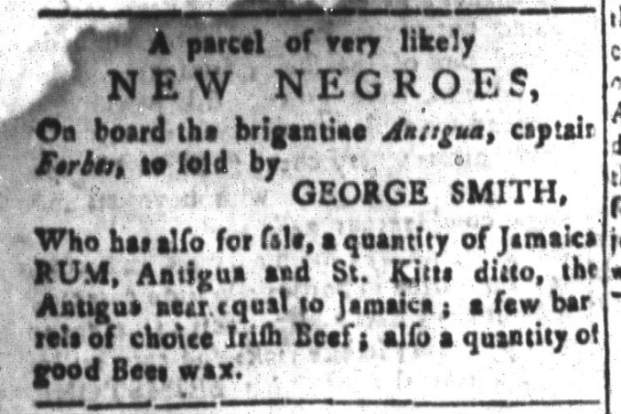 Jan 1 - South-Carolina and American General Gazette Slavery 9