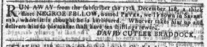 Jan 20 - Georgia Gazette Slavery 8