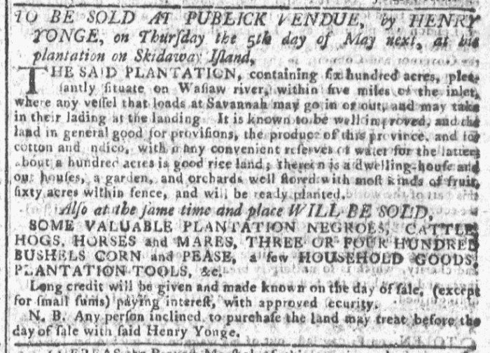 Mar 30 - Georgia Gazette Slavery 6