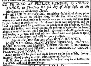 May 4 - Georgia Gazette Slavery 2