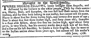 Jul 13 - Georgia Gazette Slavery 8