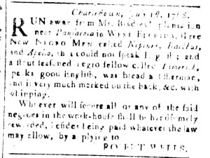 Jul 8 - South Carolina and American General Gazette Slavery 17