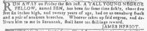 Jul 27 - Georgia Gazette Slavery 6