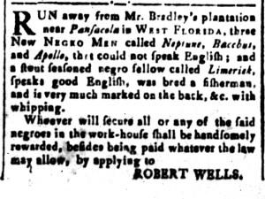 Sep 30 - South-Carolina and American General Gazette Slavery 3