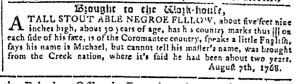 Oct 26 - Georgia Gazette Slavery 10