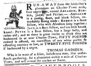 Nov 29 - South-Carolina Gazette and Country Journal Slavery 11