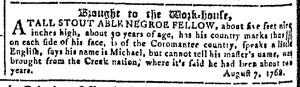 May 24 - Georgia Gazette Slavery 10