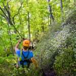 The Gorge Zipline | Saluda