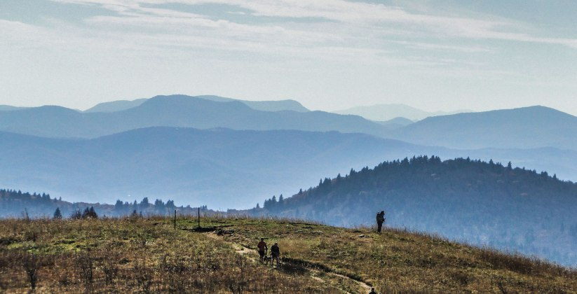Guide To The Best Asheville Hikes + Hiking…
