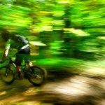 Brevard Bike Trails & Road Rides