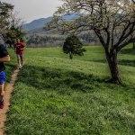 Asheville Running Adventures