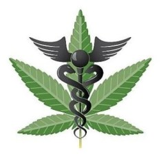 icon of a pot plant with a cadeuceus clip art cbd beauty products feature on advicesisters.com