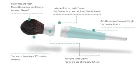 stock photo beautiac brush diagram