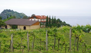 Basque wine country getaria