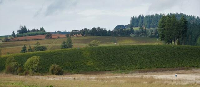 Lingua Franca: The Art of Farming
