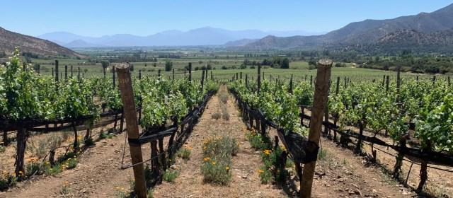 Chile: A Primer