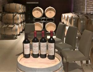 Mendoza malbec wine