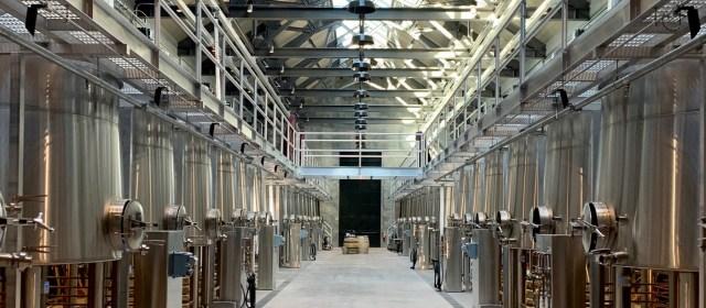 Matt Dees: Taking Wine to The Hilt
