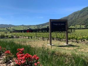 cochagua valley chile