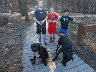 WINTER TAKES A VACATION AT BREAKHEART RESERVATION: Wednesday's warm, spring-like weather in the mid-70s gave kids throughout the region a chance to enjoy their February vacation week at Breakheart Reservation. On the left, boys walk their dogs on a trail while some visitors from Lynn enjoy a pizza picnic on a blanket spread across the ground. (Saugus Advocate Photos by Mark E. Vogler)