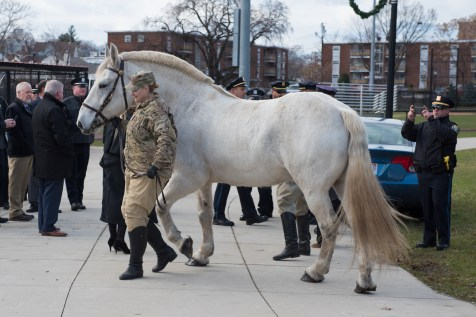 The horse was guided along the path in Glendale Park as the police department watched.