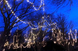 Christmas lights illuminating the Town Common during the Tree Lighting and Holiday Stroll on Dec. 1.
