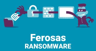 Ferosas Virus Removal Guide (+Decode .ferosas files)