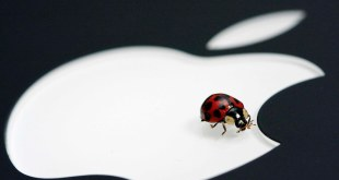 Experts found 14 vulnerabilities in iOS