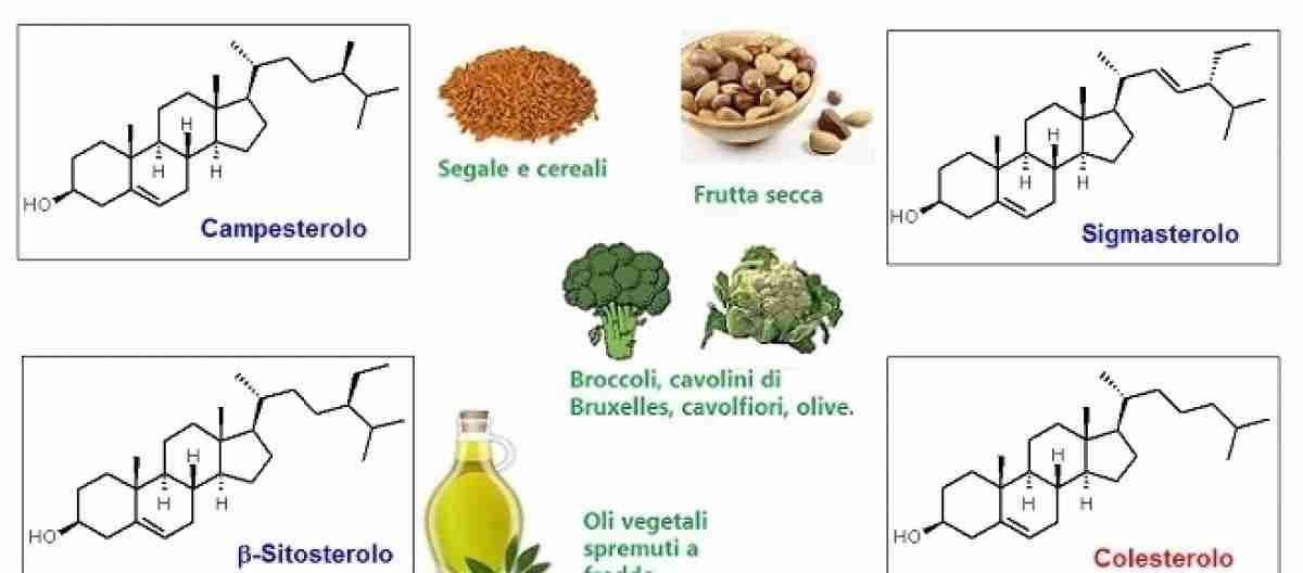 alimenti ricchi di fitosteroli