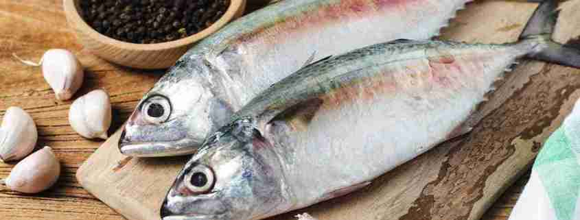 pesce infestato da anisakis simplex