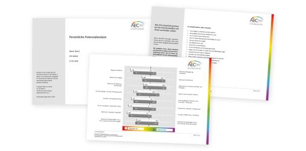 Ergebnisbericht der Persönlichkeitsanalyse AEC disc