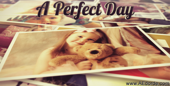 A Perfect Day - Photo / Video Gallery