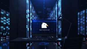 Server Reveal