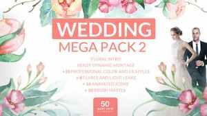 Wedding Mega Pack 2