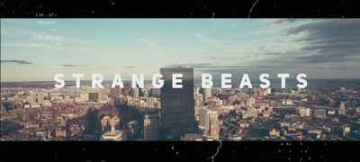 Strange Beasts // Dynamic Opener