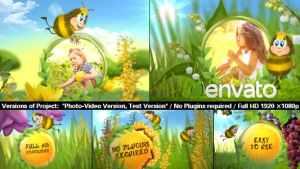 Funny Bee Slideshow