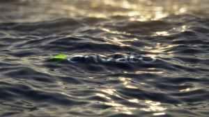 Ultra Realistic Ocean Logo