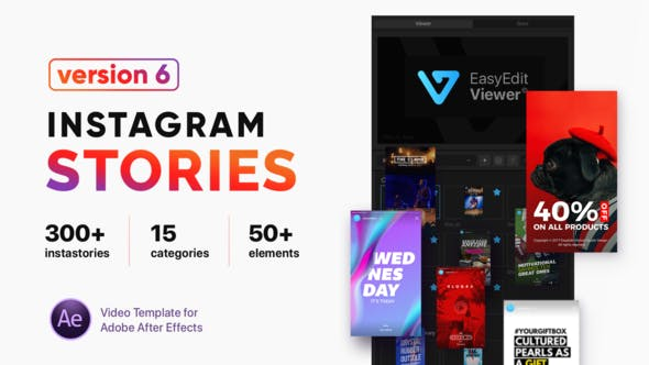 VIDEOHIVE INSTAGRAM STORIES V6 21850927