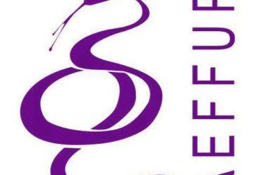Inquéritos Pré-Adequação PEECF 2017