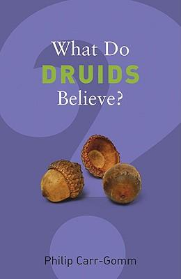 whatdodruidsbelieve
